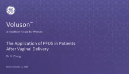 2019 ISUOG - The Application of PFUS in Patients After Vaginal Delivery (Dr. Zhang)