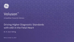 2019 ISUOG - Driving Higher Diagnostic Standards with e4D in the Fetal Heart (Dr. Heling)
