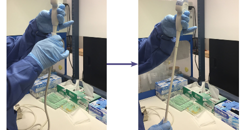 Step by Step guide for disinfecting your Probes (GEHC)
