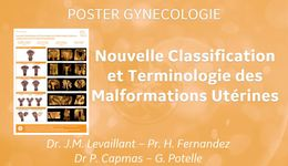 Malfomations Utérines Poster Gyn FR