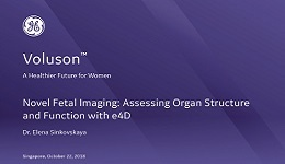 ISUOG 2018 - Novel Fetal Imaging: Assessing Organ Structure and Function with e4D with Dr. Sinkovskaya